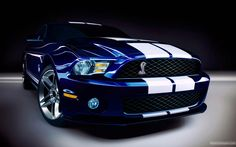 2010_ford_shelby_gt500-wide.jpg (1920×1200)