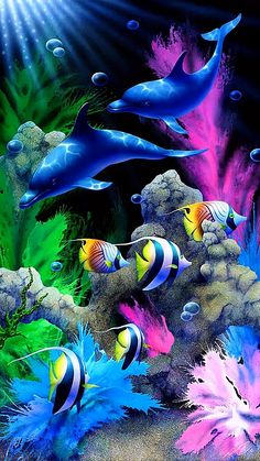 Gif of Fish, Dolphins, and Even Nemo Swimming Colorful Fish, Tropical Fish, Animals Beautiful, Cute Animals, Animals Sea, Beautiful Fish, Ocean Wallpaper, Underwater Wallpaper, Underwater Painting