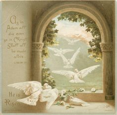 """Doves ~ """"As in Adam all die even so in Christ shall all be made alive.  He is Risen."""""""