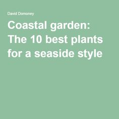 Coastal garden: The 10 best plants for a seaside style