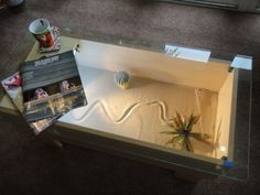 Modern Rectangular Snake Terrarium Coffee Table
