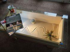 Modern Rectangular Snake Terrarium Coffee Table Breathtaking Terrarium Coffee Table Designs Ideas