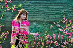 beautiful girl beside flowers in Sapa