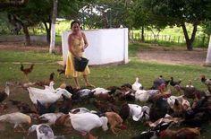 Mas logo a raiva passava pois era lindo ver os animais serem alimentados.