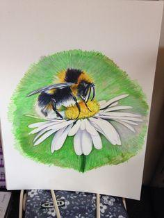 Watercolour pencil drawing