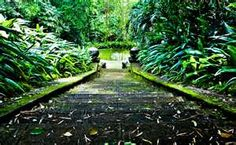 The Brief Garden, Sri Lanka-Bevis Bawa