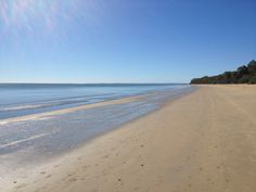 Hervey Bay, Queensland Virtual Assistant, Australia, Beach, Water, Outdoor, Water Water, Aqua, Outdoors, The Beach