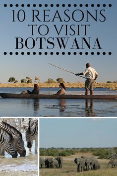 The top 10 reasons why you should visit Botswana in Southern Africa.