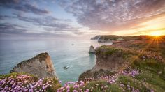 Freshwater bay low res