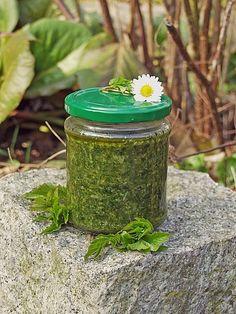 Chefkoch.de Rezept: Pesto aus Giersch und / oder anderen Wildkräutern