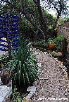 love the little walkway but just noticed the blue bottle tree also on the left!