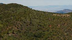 View Timber Creek Overlook