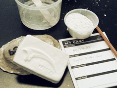 Get your hands dirty and make your own fossil replica Learn about the fossil's origin and when and why casts are used. 3d Projects, Fossils, Dinosaurs, Programming, Claire, Public, It Cast, Museum, Canada