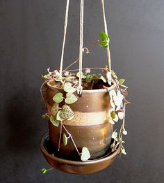 Hanging ceramic planter painted with a metallic hue
