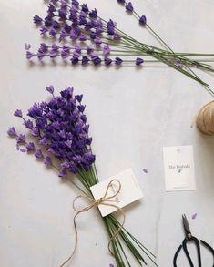 The sweetest Lavender Bouquet Paper Flowers Craft, Felt Flowers, Flower Crafts, Diy Flowers, Flower Bouquet Diy, Lavender Bouquet, Paper Bouquet Diy, Gypsophila Bouquet, Lavender Decor