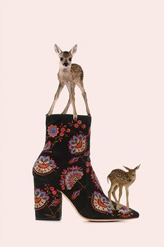 """LR Loves: Alex Proba featuring the Isla Slim Ankle Bootie and """"A Poster A Day"""""""
