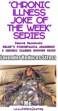 'Chronic Illness Joke of the Week' Series – Joke about using crazy amounts of lavender to help with stress, as we are willing it try it all to get some help! Image by & image credits in post Adrenal Fatigue Treatment, Adrenal Fatigue Symptoms, Rheumatoid Arthritis Symptoms, Endometriosis, Fibromyalgia Quotes, Chronic Illness, Chronic Pain, Joke Of The Week, Lavender For Sleep