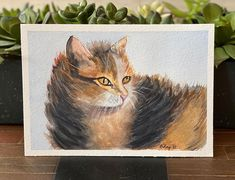 "Barbara Ford on Instagram: ""#watercolorcat #watercolorpainting #watercolorart #watercolorpractice"" Watercolor Cat, Watercolor Paintings, Ford, Cats, Animals, Instagram, Gatos, Animales, Water Colors"