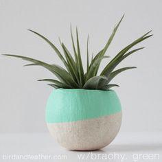 Paint me a pot plant