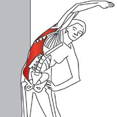 100 Free Stretching Exercises For Pain Relief...