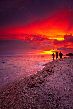 Magazine photographer portfolio: Beach sunset at a tropical island resort in the Philippines What A Wonderful World, Beautiful World, Beautiful Places, Sun And Clouds, Filipina, Wonders Of The World, Philippines, Traveling By Yourself, Nature