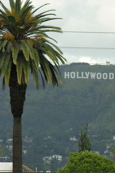 Hollywood. Where the magic happens. Take a photo of yourself in front of the iconic sign, visit the Walk of Fame, and enjoy great shopping and restaurants. 30 miles from campus.