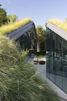 ♀ Eco design green architecture sustainable style living Green Rooftop Edgeland House by  Bercy Chen Studio