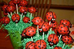But if doing cookies as party favors, do we need? Cake pops at a Ladybug Party Ladybug Cake Pops, Ladybug Cakes, Lady Bug, Animal Themed Food, Miraculous Ladybug Party, Cakepops, Ladybug 1st Birthdays, Marshmallow, Ladybug Und Cat Noir