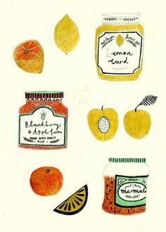 Katt Frank Illustrations | Kit + Forage