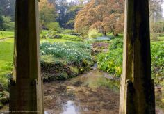 Stream from under Bridge at #Sezincote. See the view from under this bridge in a full screen panorama here: http://uktripper.com/visits/sezincote-house-and-garden/