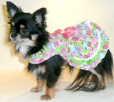 Dog Clothes Sweet Summertime Dog Dress, Chihuahua, Yorkie