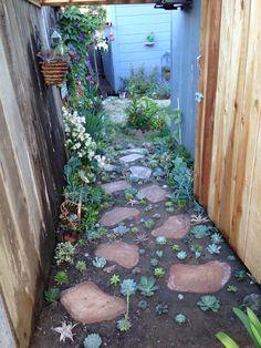 Susan's garden, succulent path pathway, hanging flowers, flower, arrangement, murphyfrog, repurpose, container gardening