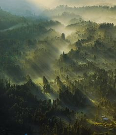 """Cemoro Lawang from Penanjakan, Taman Nasional Bromo Tengger Semeru, Jawa Timur. Photo by @_bimo_ #livefolkindonesia"