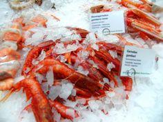 Fangfrische Spezialitäten von Gastrofresh