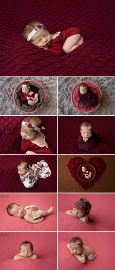 10 day old Liliana and here studio newborn photo shoot using deep reds and pinks.  Sunny S-H Photography Winnipeg