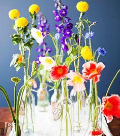 Abundant flowers on blue