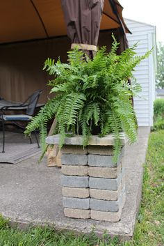 "Ryan made these little pillars to hold ferns. He just took 6x6 square paver stones and stacked them up (four stacks of seven) and then put a large paver on top. Nothing to ""glue"" it together - but it's been fine through storms and wind! If you find pavers on sale, it's an inexpensive, easy, classy way to dress up your patio!"