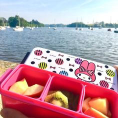 Pique-nique  après avoir voté de bon matin  #bento #breakfast #fruit #fuji #kiwi #erdre #river #nantes #sunshine #simple #happiness - from #rosalys at www.rosalys.net - work licensed under Creative Commons Attribution-Noncommercial - #Plus