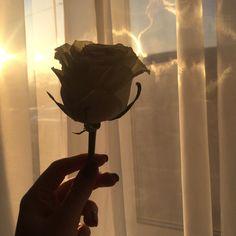 ☁️ pinterest | anhendrick ☁️