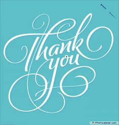 Thank You Greeting Card - handmade calligraphy Thank You Memes, Thank You Font, Thank You Typography, Calligraphy Thank You, Calligraphy Cards, Thank You Letter, Thank You Cards, Caligraphy, Calligraphy Alphabet