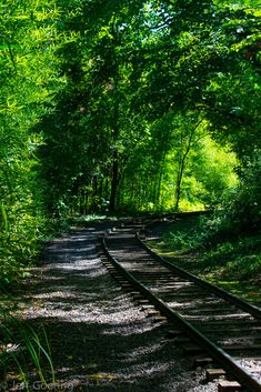 Train Tracks in the shadows! Abandoned Train, Abandoned Places, By Train, Train Tracks, Train Miniature, Old Steam Train, Railroad Pictures, Old Trains, Train Pictures