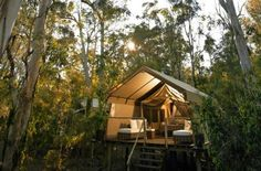 Top 25 Tents & Tipis for Glamping Around the Globe Go Glamping, Camping Glamping, Luxury Camping, Camping Hacks, Tree Camping, Boutique Camping, Camping Guide, Beach Camping, Camping Gear