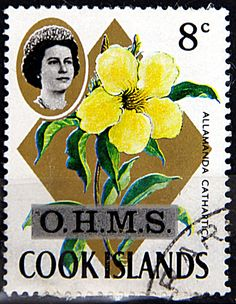 Cook Islands. ALLAMANDA CATHARTICA & QUEEN ELIZABETH II. Scott O6 A34, Issued 1970 May 17, Unwmk, Surcharged 8c on #208, Perf. 14 x 13 1/2.