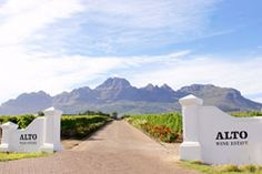 Alto Wine Estate in Stellenbosch, Western Cape. Alto's beginnings start in where it was part of a farm named Groenrivier (Green River). Farm Name, Wine Facts, South African Wine, Green River, Wine Wednesday, Vintage Wine, Cabernet Sauvignon, Wines, Red Wine