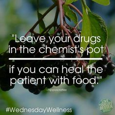 Leave your drugs in the chemist's pot if you can heal the patient with food. Great Words, Wise Words, Hippocrates Quotes, Naturopathy, Life Thoughts, Food Nutrition, Chemist, Health Quotes, Massage Therapy