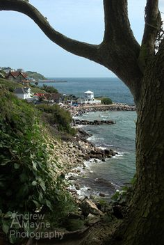 Steephill Cove, Isle of Wight www.andrewmayne.co.uk