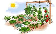 Como fazer uma horta em casa ocupando apenas 1 m² - The Greenest Post