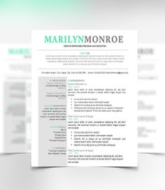 Resume Template Cover Letter  Networking    Template