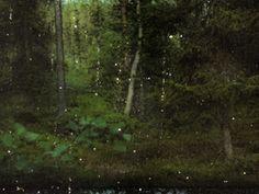 Available for sale from Galerie Anhava, Jorma Puranen, Victims of Finnish Forest Murders Archival pigment print, 35 × 25 cm Artsy, Check, Artwork, Work Of Art, Auguste Rodin Artwork, Artworks, Illustrators