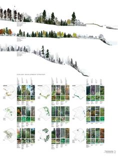 Very cool planting ecology diagrams.   Point Pleasant Park, Halifax. North Design Office.